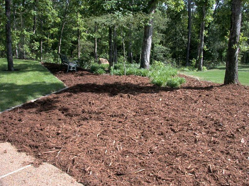 Shredded Pine Bark: Mulch